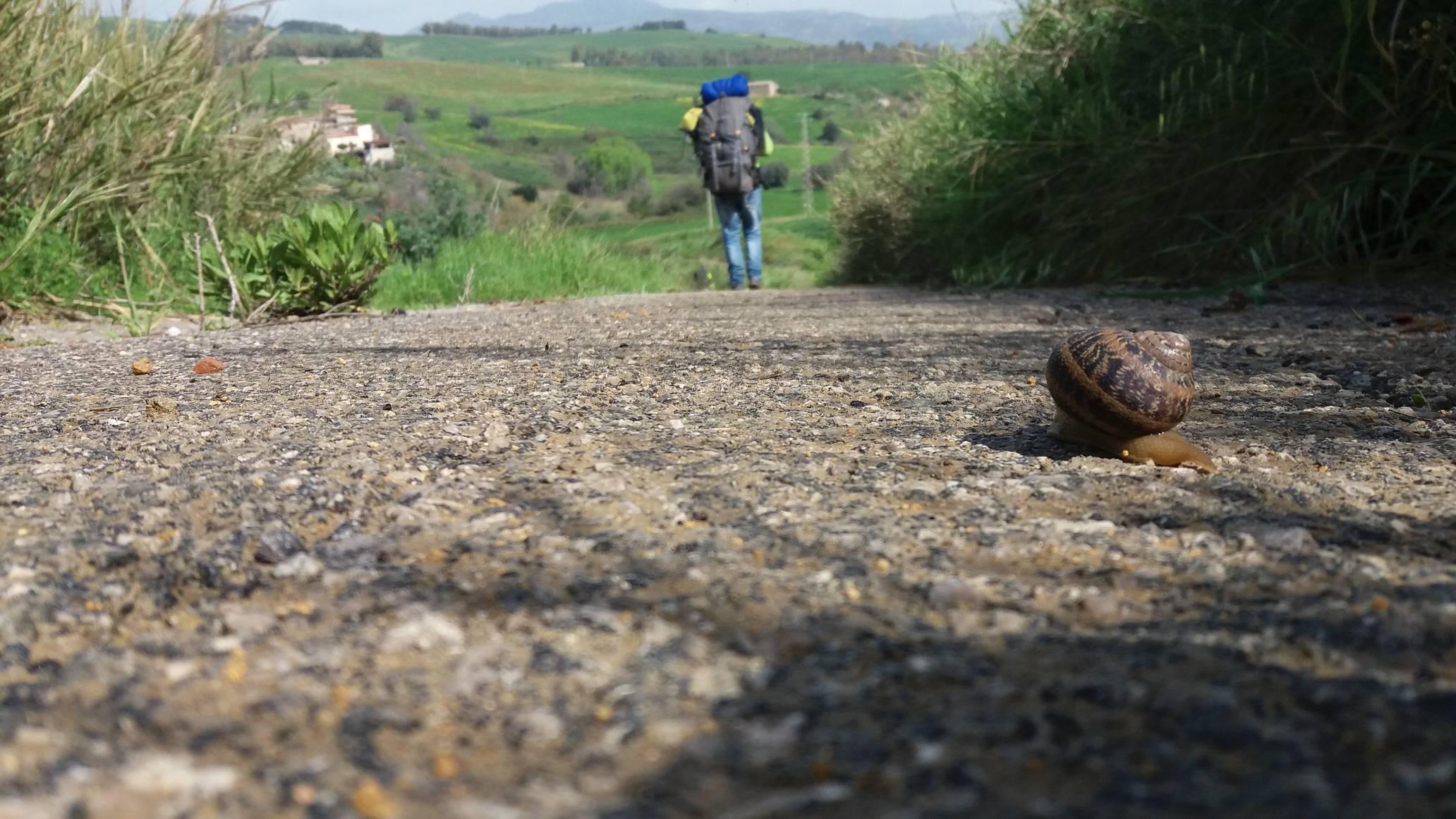 1° Cammino Internazionale Dell'Antica Trasversale Sicula